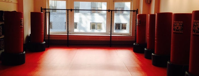 Tiger Schulmann's Mixed Martial Arts is one of NYC 2012 summer bucket list.