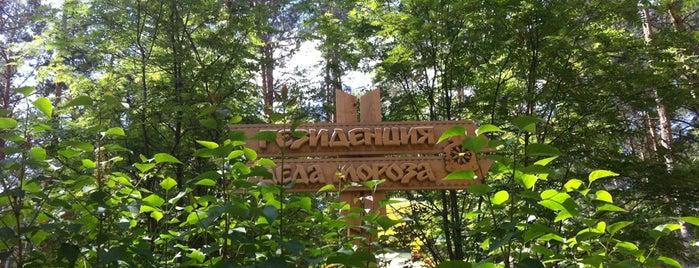 Томская Писаница is one of สถานที่ที่บันทึกไว้ของ Ольга.