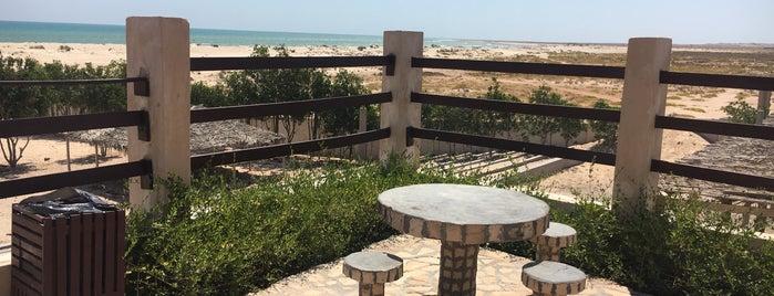 Al Ashkhara beach resort is one of Gespeicherte Orte von Ba6aLeE.