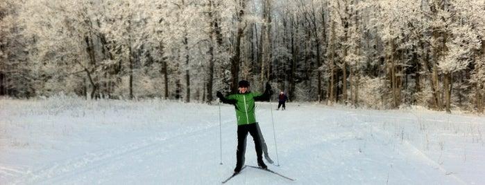 Лыжная база «Чайка» is one of Lena : понравившиеся места.