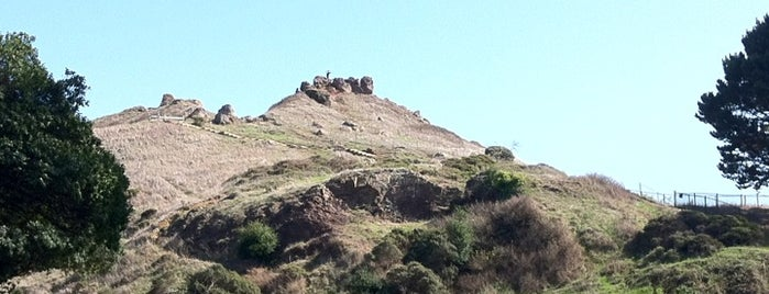 Corona Heights Park is one of Cali.