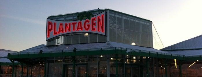 Plantagen is one of Ralf : понравившиеся места.