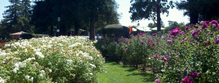 San Jose Municipal Rose Garden is one of (South) Bay Places.