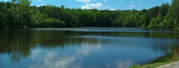 Crowders Mountain State Park is one of Best Places to Check out in United States Pt 1.
