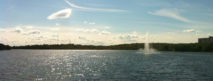Семёновское озеро is one of Lugares favoritos de Александр.