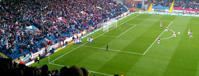Ewood Park is one of badger.