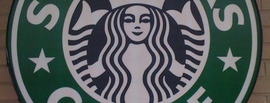 Starbucks is one of Dane : понравившиеся места.