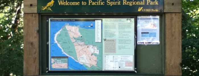 Pacific Spirit Regional Park is one of Vancouver in a nutshell.