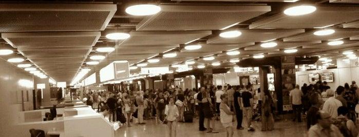 GVA Arrival Hall is one of Geneva (GVA) airport venues.