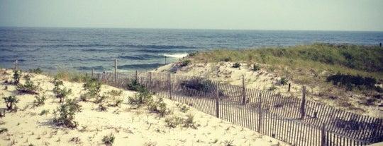 Holgate Beach LBI is one of Cindy : понравившиеся места.