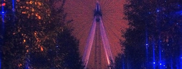 The London Eye is one of London Diaries.