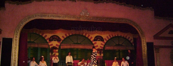 Tablao Flamenco El Palacio Andaluz is one of Sevilla.