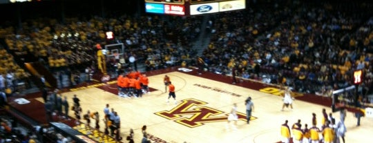 Williams Arena is one of Big Ten Men's Basketball Arenas.