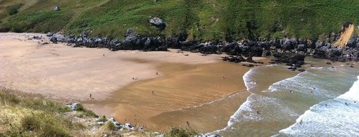 Playa Punta de Sonabia is one of Playas de España: Cantabria.