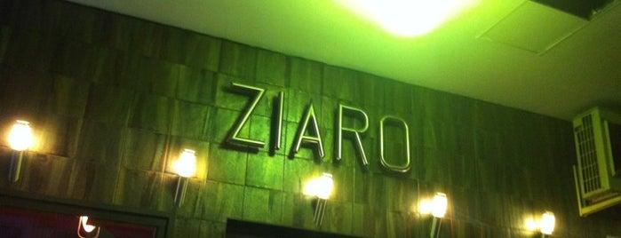 Ziaro is one of Lieux qui ont plu à Rocío.