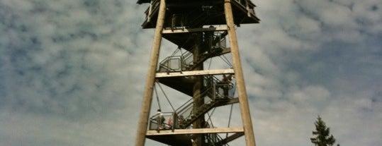 Eugen-Keidel-Turm is one of Alexander'in Beğendiği Mekanlar.