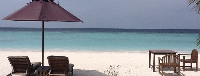 Dhoni Island is one of Maldives - The Sunny Side of Life.