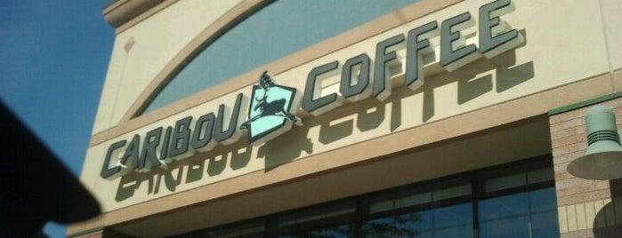 Caribou Coffee is one of Tempat yang Disukai Amanda.