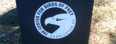Center For Birds Of Prey is one of Best Places to Check out in United States Pt 1.