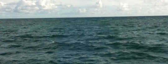 Sandbar!! Middle Of The Ocean :) is one of My Favorite Oahu.