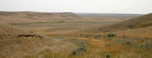 Grasslands National Park is one of Canadian National Parks.