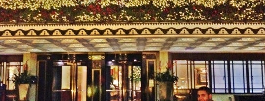 The Dorchester is one of London☕️🍫🍨.