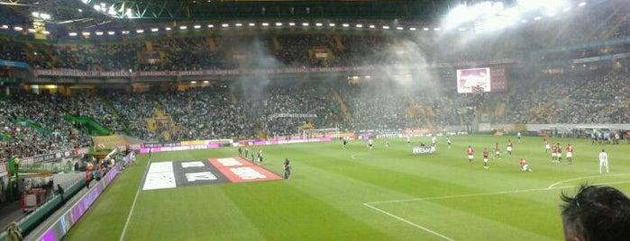 Estádio José Alvalade is one of International Sports~Part 1....