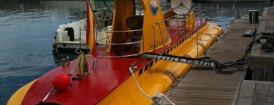 Submarine Safaris is one of Posti che sono piaciuti a Maria.