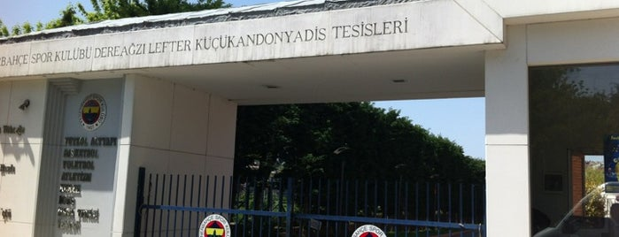 Fenerbahçe SK Dereağzı Lefter Küçükandonyadis Tesisleri is one of Burakさんの保存済みスポット.