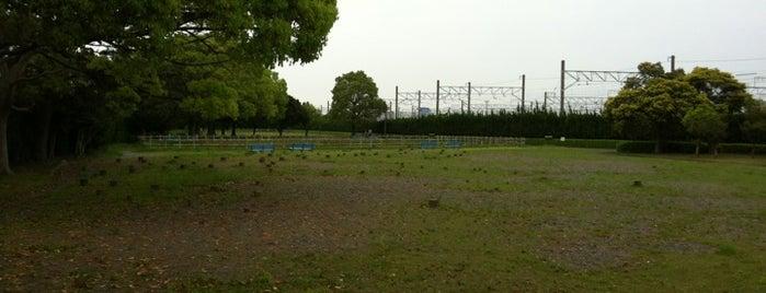 伊場遺跡公園 is one of 登下校の道.