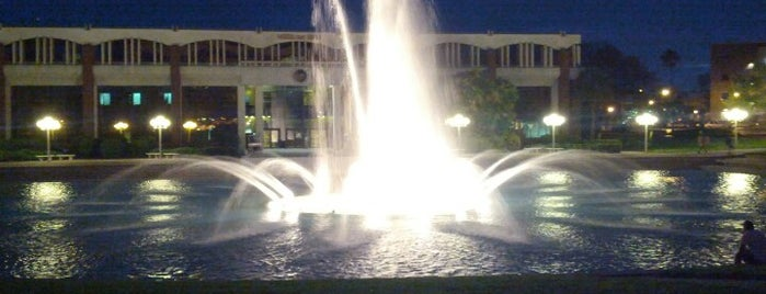 UCF Reflection Pond is one of Locais curtidos por Donna.