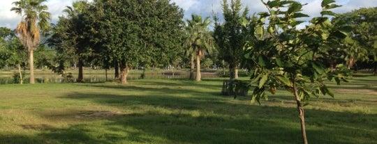 สวนเฉลิมพระเกียรติ 48 พรรษา (สวนหลวง ร.9) Suan Luang Park is one of Phucket & SG.