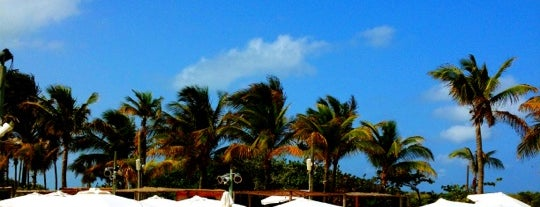 Nikki Beach Miami is one of Best of USA (except NY).