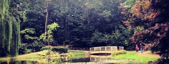 Edith J. Carrier Arboretum is one of Gespeicherte Orte von Megan.
