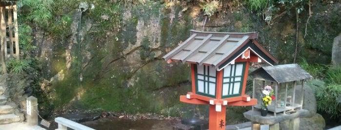 不動の滝 is one of せたがや百景 100 famous views of Setagaya.