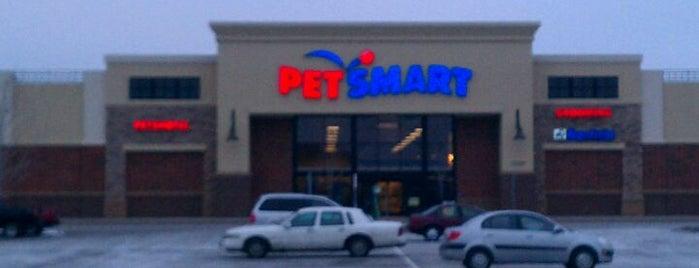 PetSmart is one of Ernesto 님이 좋아한 장소.
