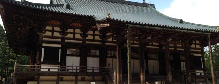 高野山 金堂 is one of World heritage - KOYASAN.