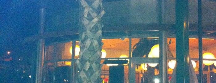 Palmiye Cafe & Bistro is one of Enkara.