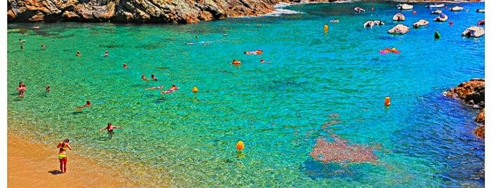 Cala Pola is one of Playas de España: Cataluña.