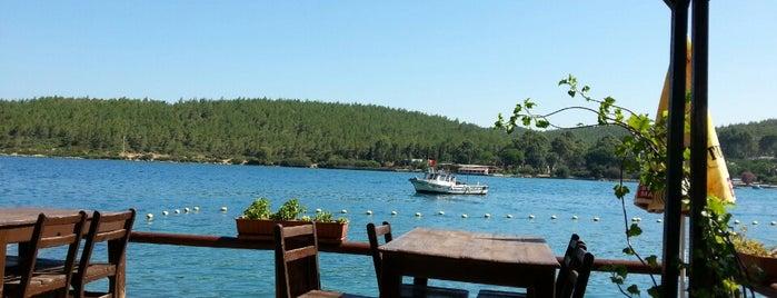 Guvercin Motel-restaurant is one of Tulga'nın Beğendiği Mekanlar.