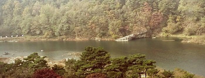 SONO Moon Yangpyeong is one of Lugares favoritos de Hyun Ku.