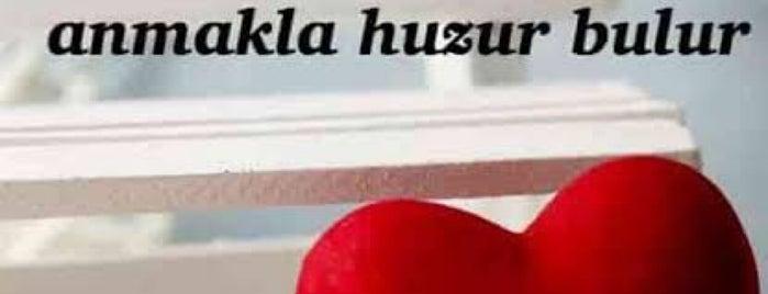 Türkiş is one of Sinan'ın Beğendiği Mekanlar.