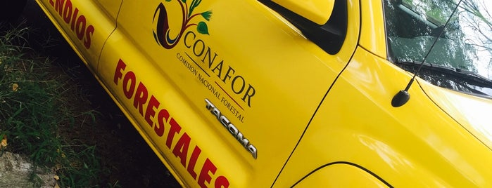 Conafor is one of Posti che sono piaciuti a Eileen.