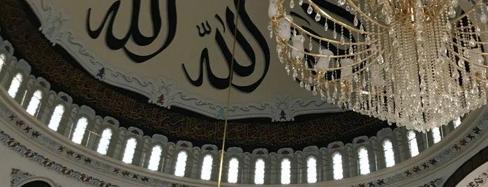 Yahyalar Merkez Camii is one of Orte, die Yunusum gefallen.