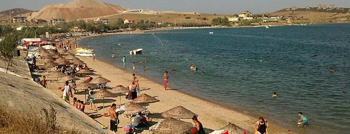 Karabiga Plajı is one of Locais curtidos por Seda.