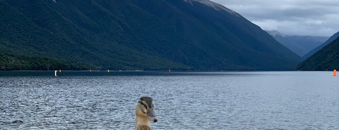 Nelson Lakes National Park is one of NZ NP.