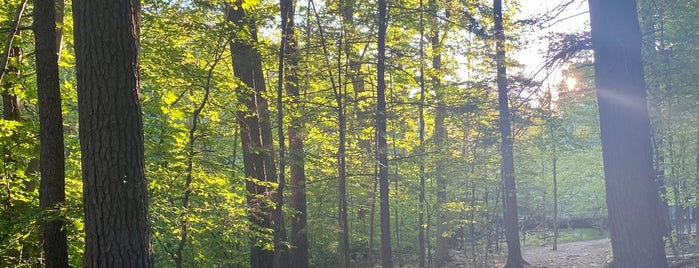 Comeau Trails is one of Upstate.