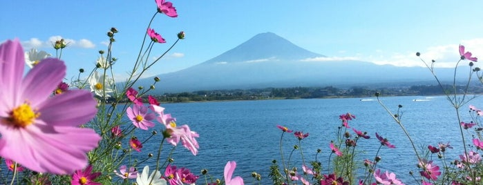 Lake Kawaguchi-ko is one of Japan Point of interest.