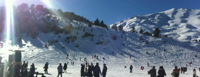 Χιονοδρομικό Κέντρο Ζήρειας is one of Winter destinations in Greece.