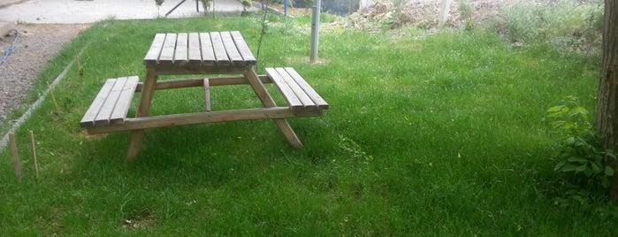 Yeşildere Piknik Alanı is one of Locais curtidos por 🇹🇷sedo.